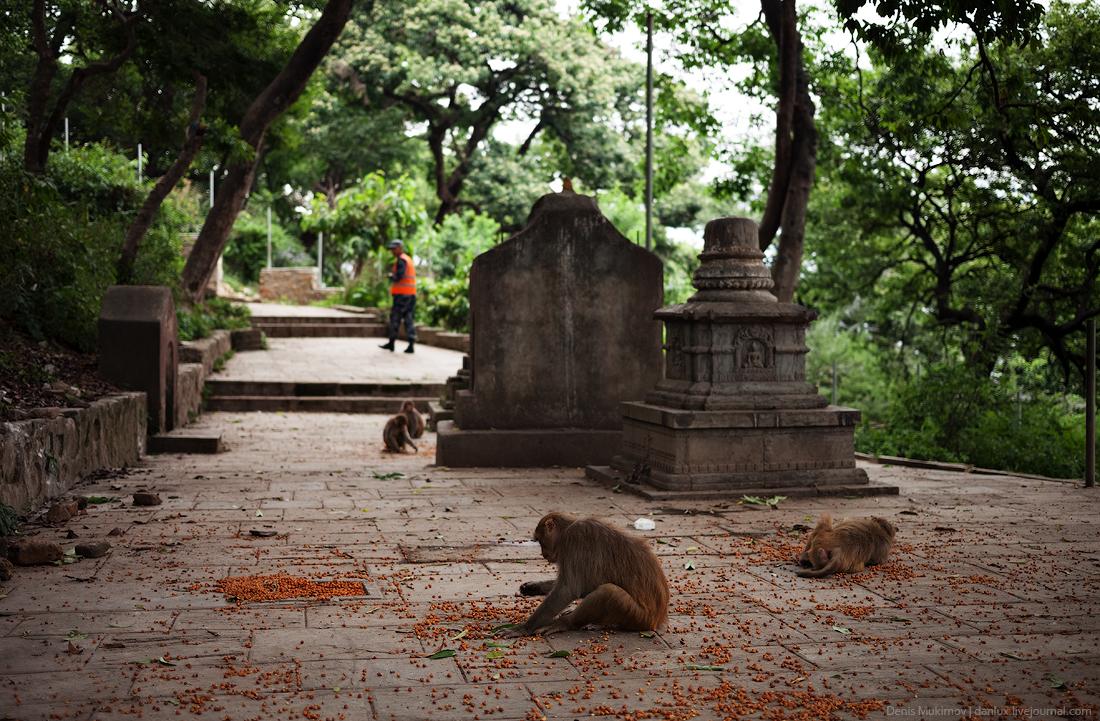 Kathmandu. The streets and shrines_26