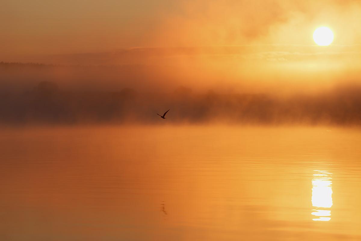Lake Pavlenkova_01