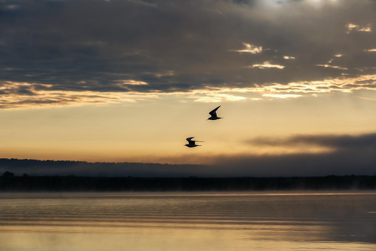Lake Pavlenkova_10