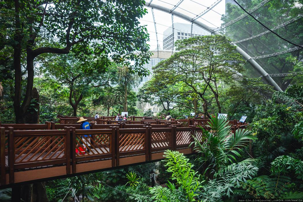 Park Hong Kong_06