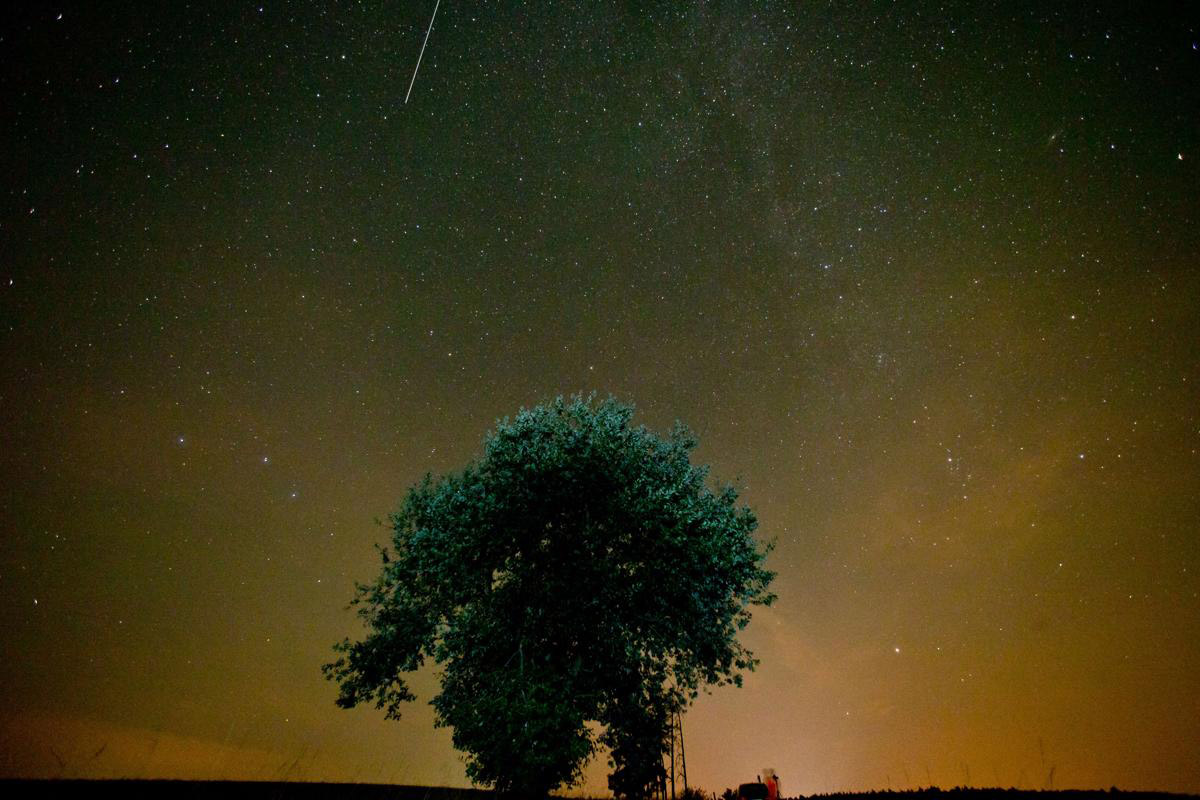 Perseid meteor shower_13