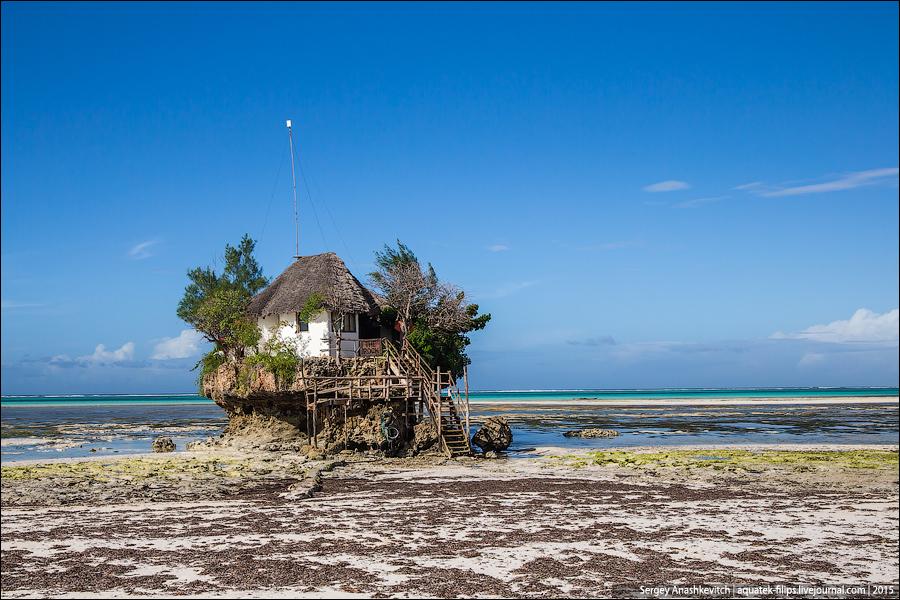 Восточный берег Занзибара. Июнь 2015