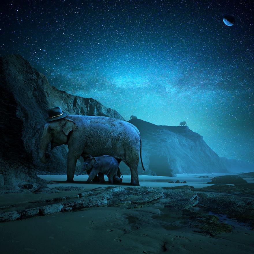 Я создаю сюрреалистические миры для животных, где они могут жить без жестокости