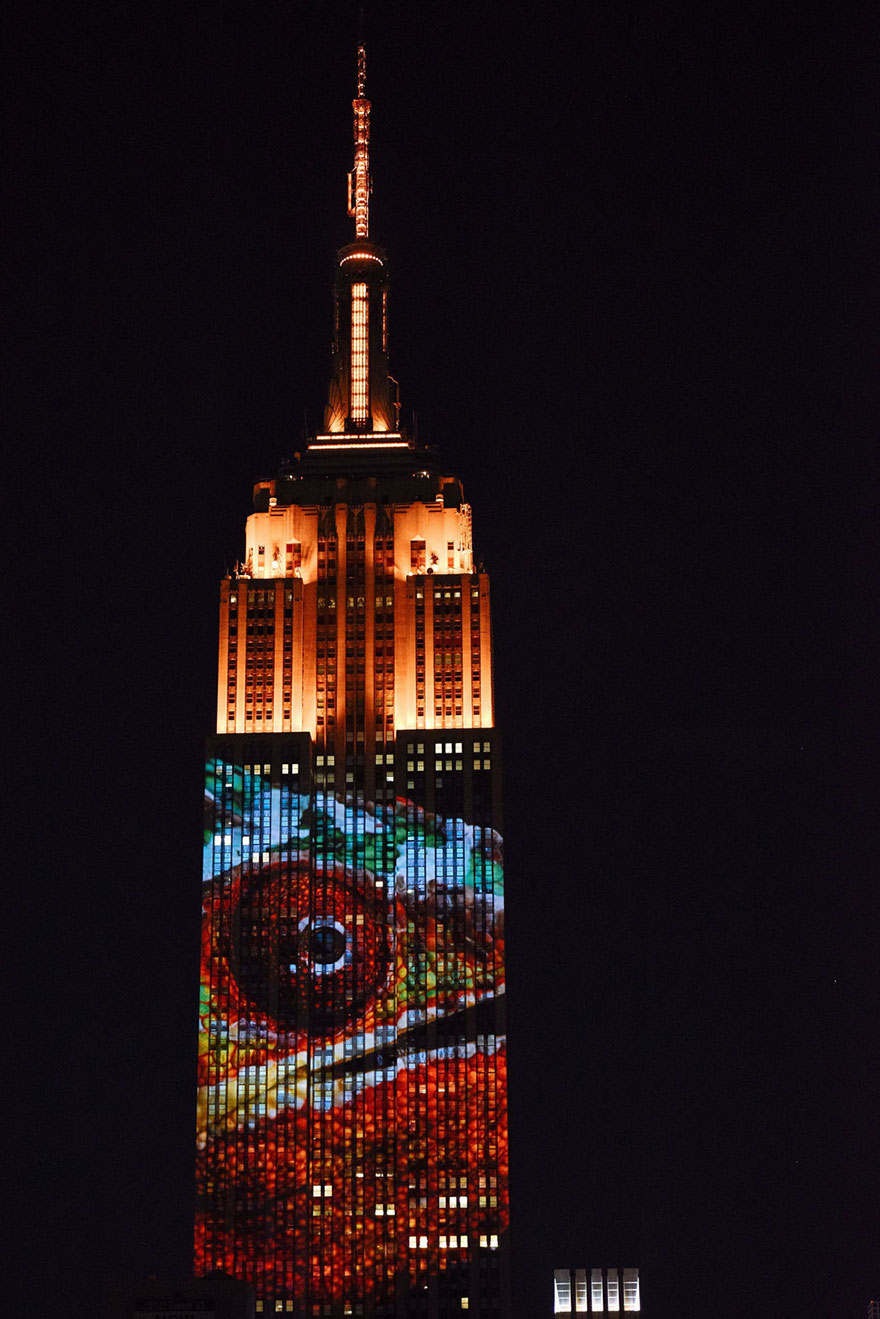 empire-state-projection-endangered-animals-nyc-32