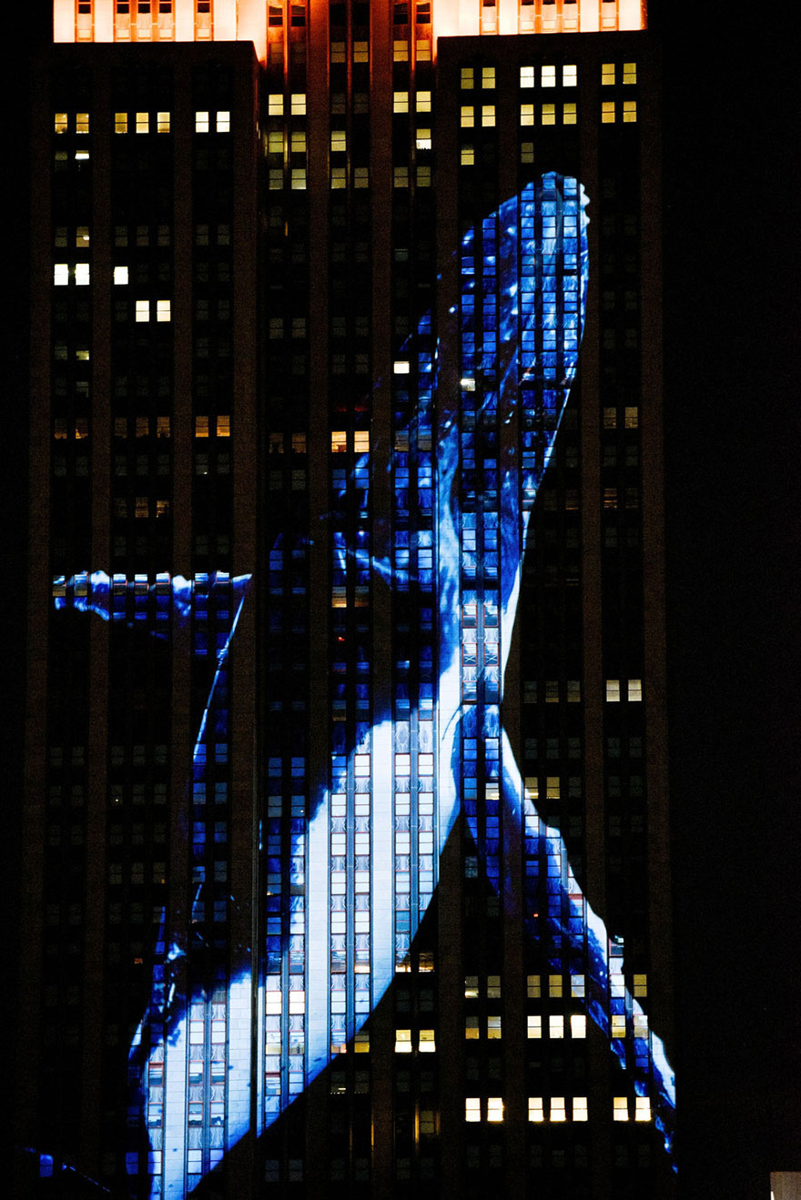 empire-state-projection-endangered-animals-nyc-34