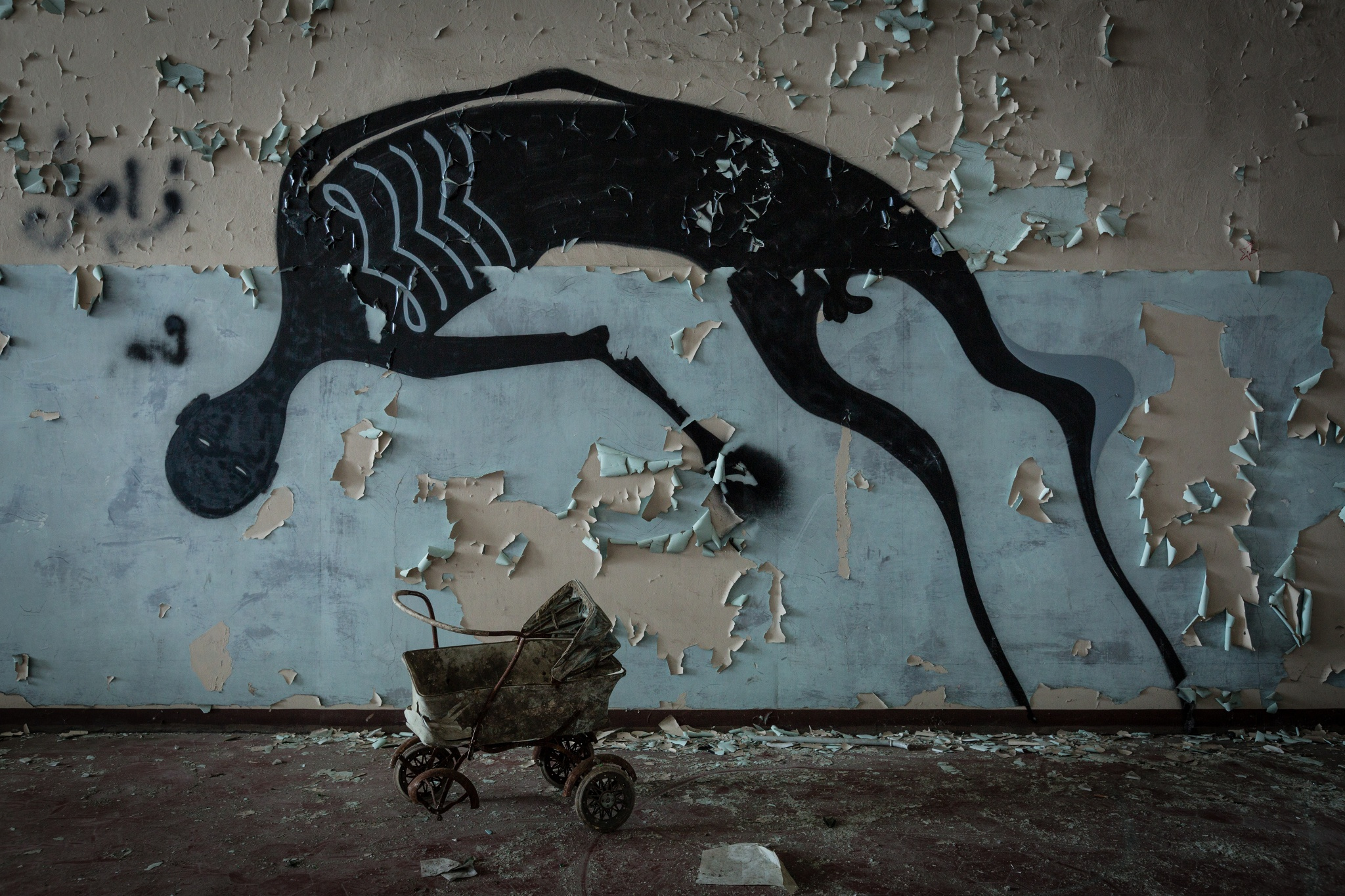 Abandoned psychiatric hospital 10