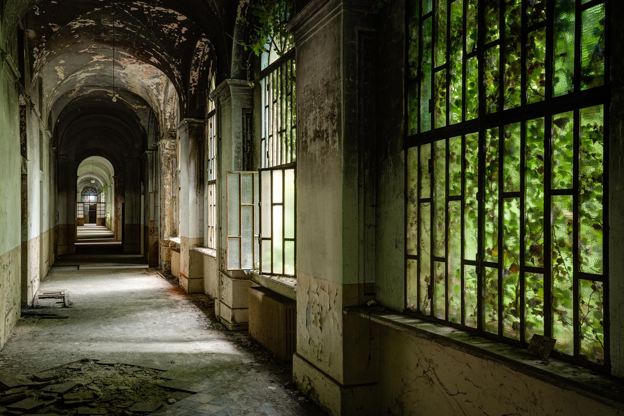Abandoned psychiatric hospital 11