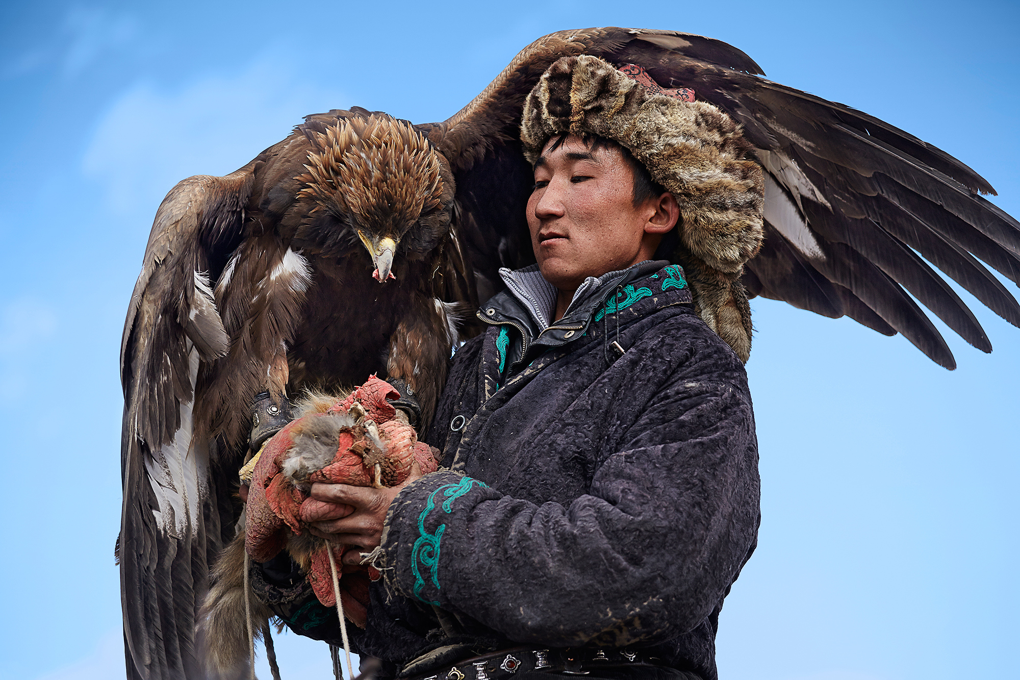 Eagle hunting in Mongolia 01