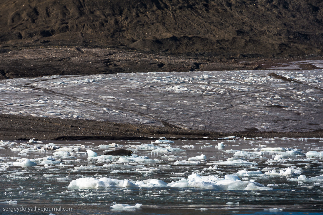 Glacier Esmark 11