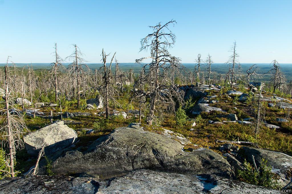 Karelia 19
