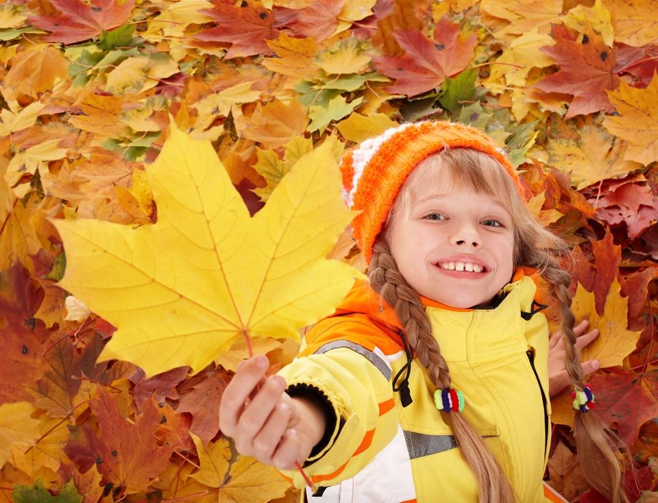 gold autumn 20