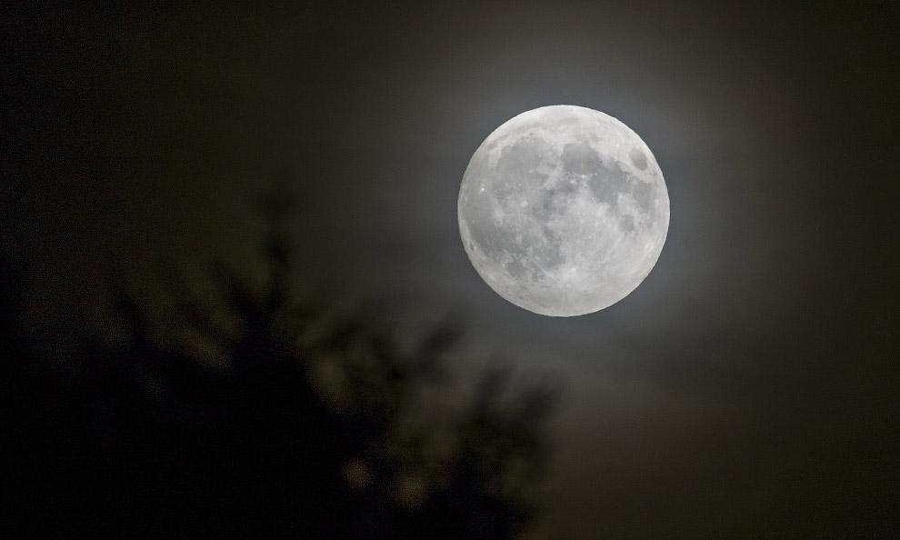 luna roja_20