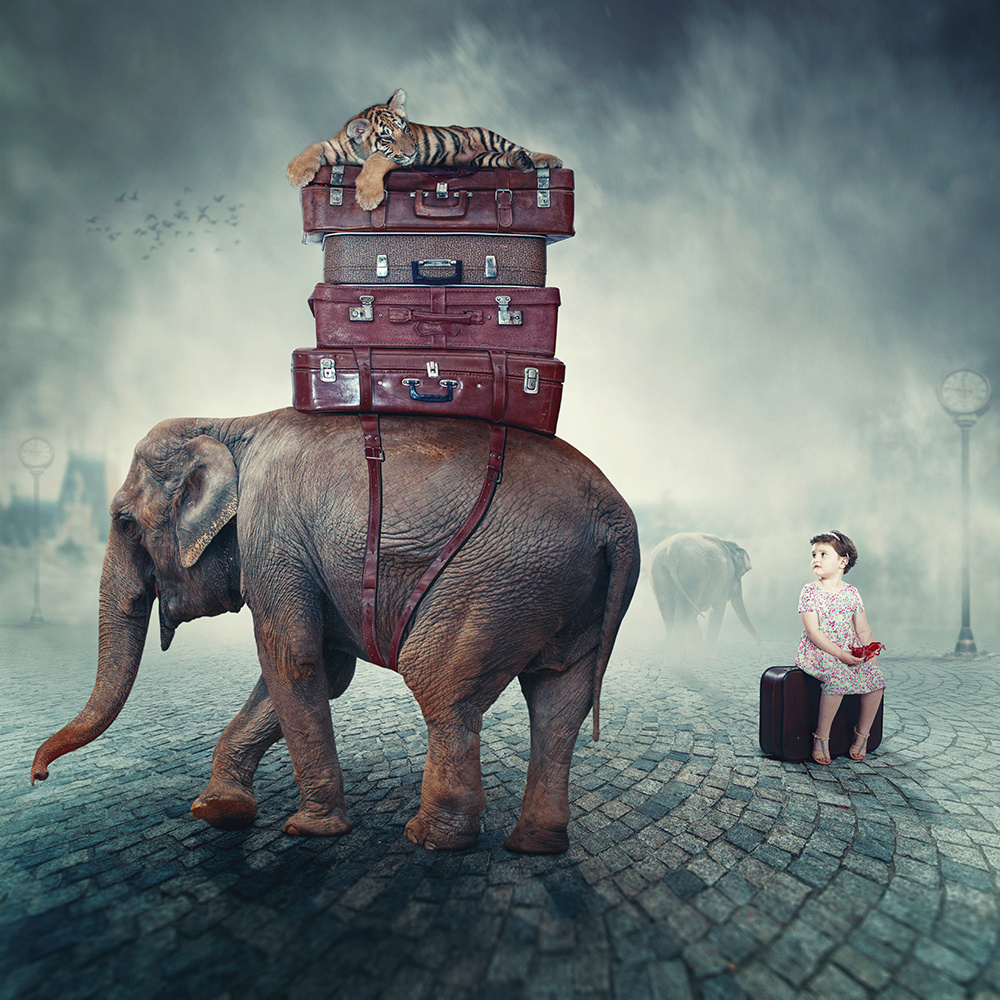 surreal-photo-manipulations-caras-ionut-5