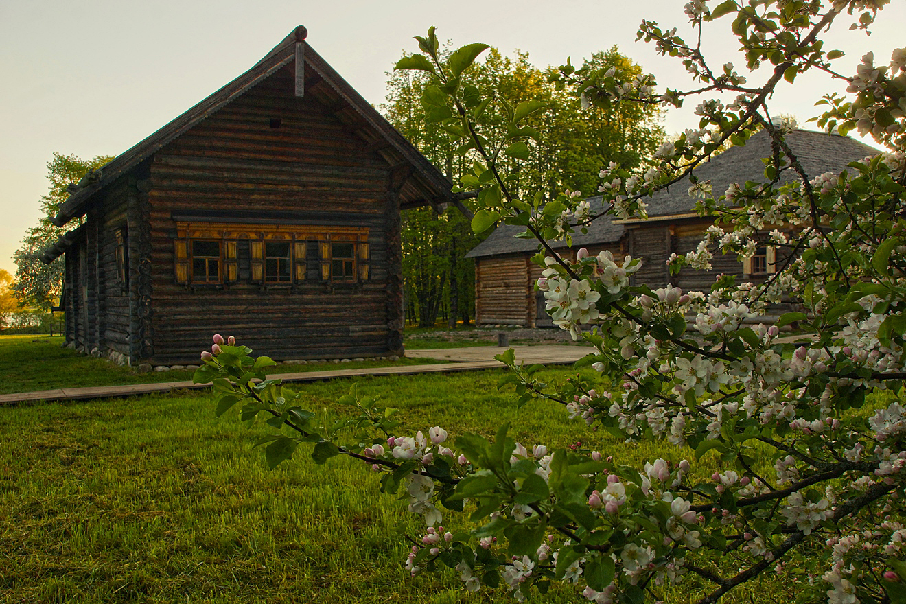 the Museum of wooden architecture in Russia_26