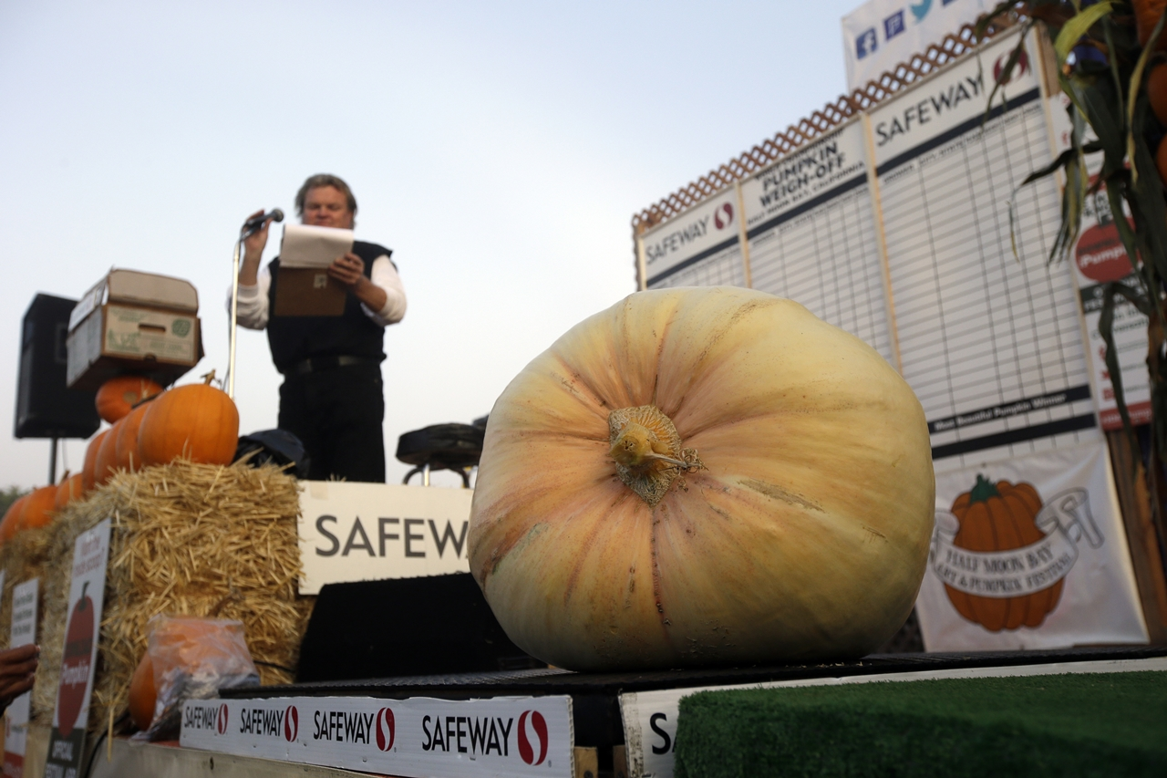 2015 Pumpkin World Championship 12