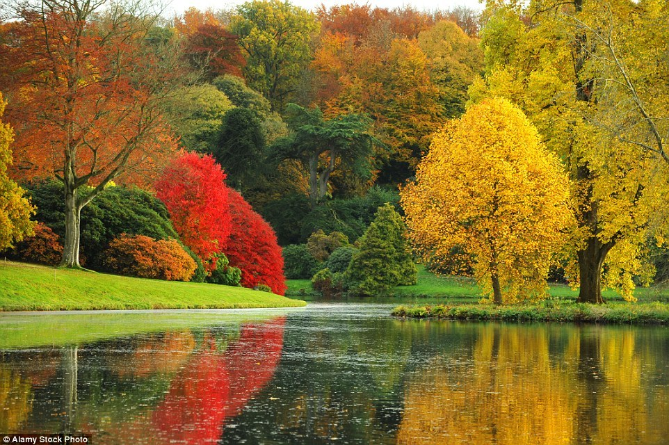Autumn in the UK 03