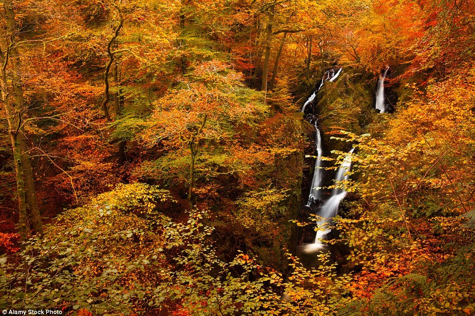 Autumn in the UK 18