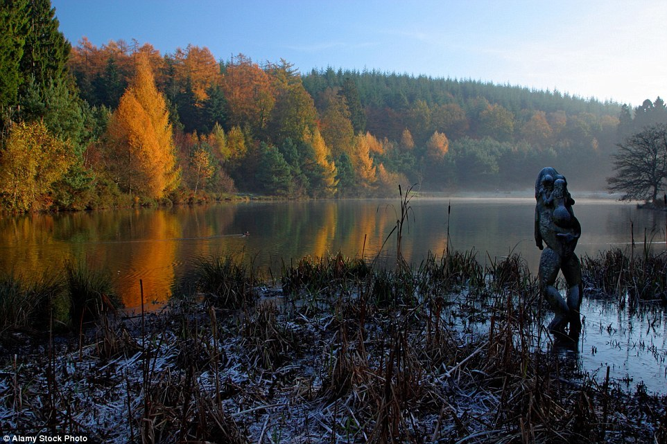 Autumn in the UK 20