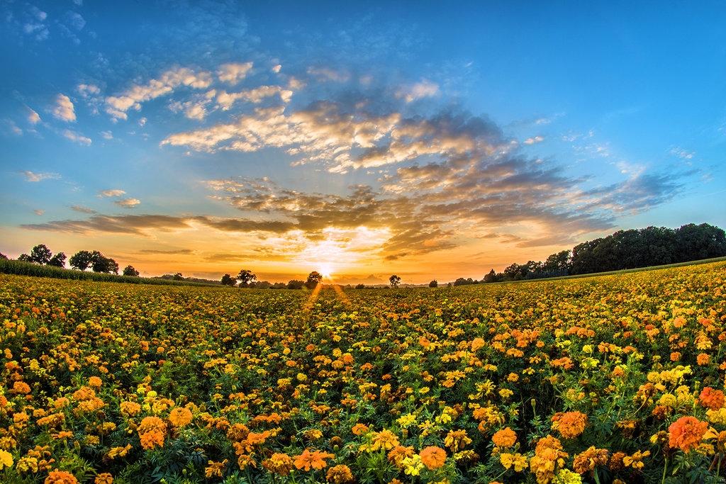 Beautiful scenery from Daniel Heydecke 07