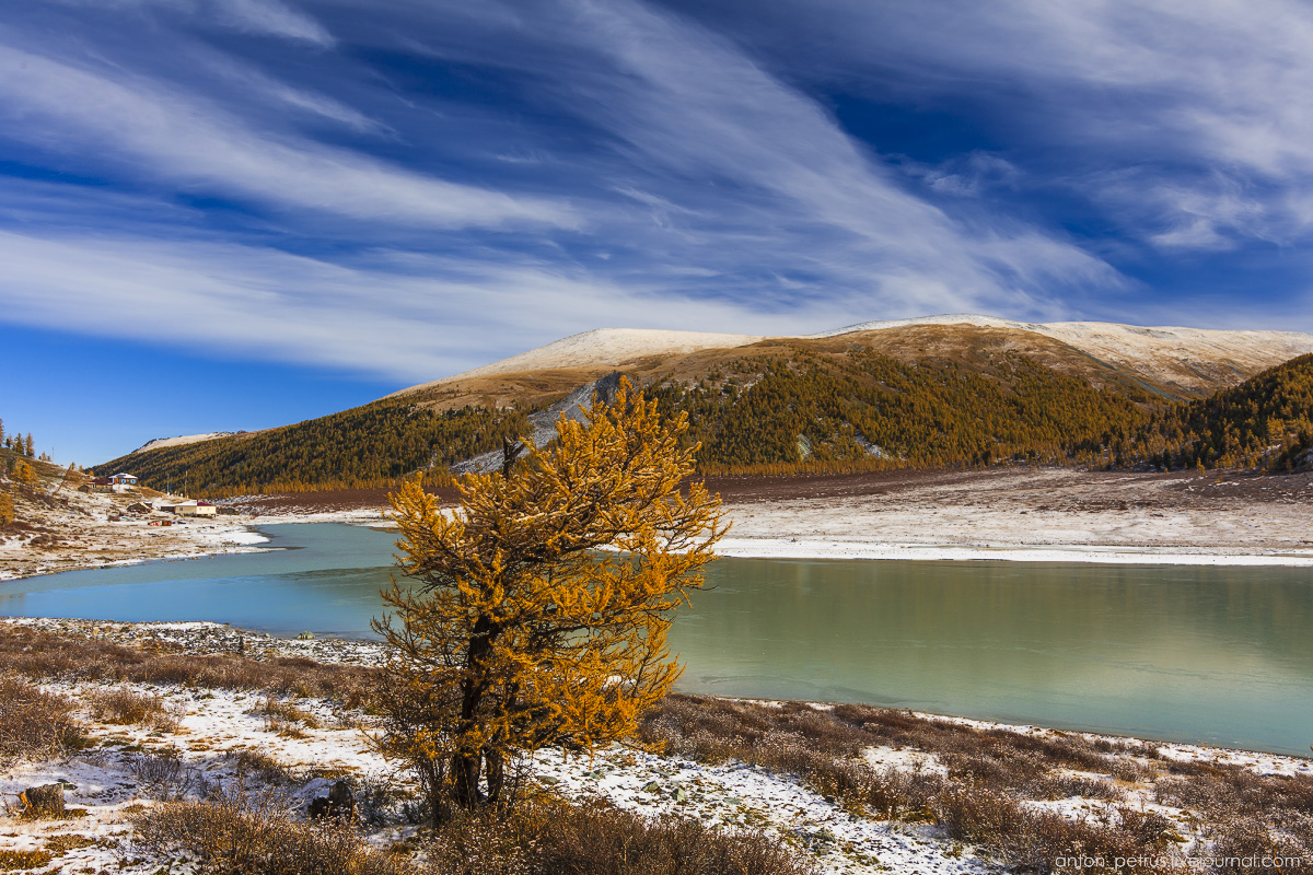 Golden autumn in Altai. Lake Akkem 04