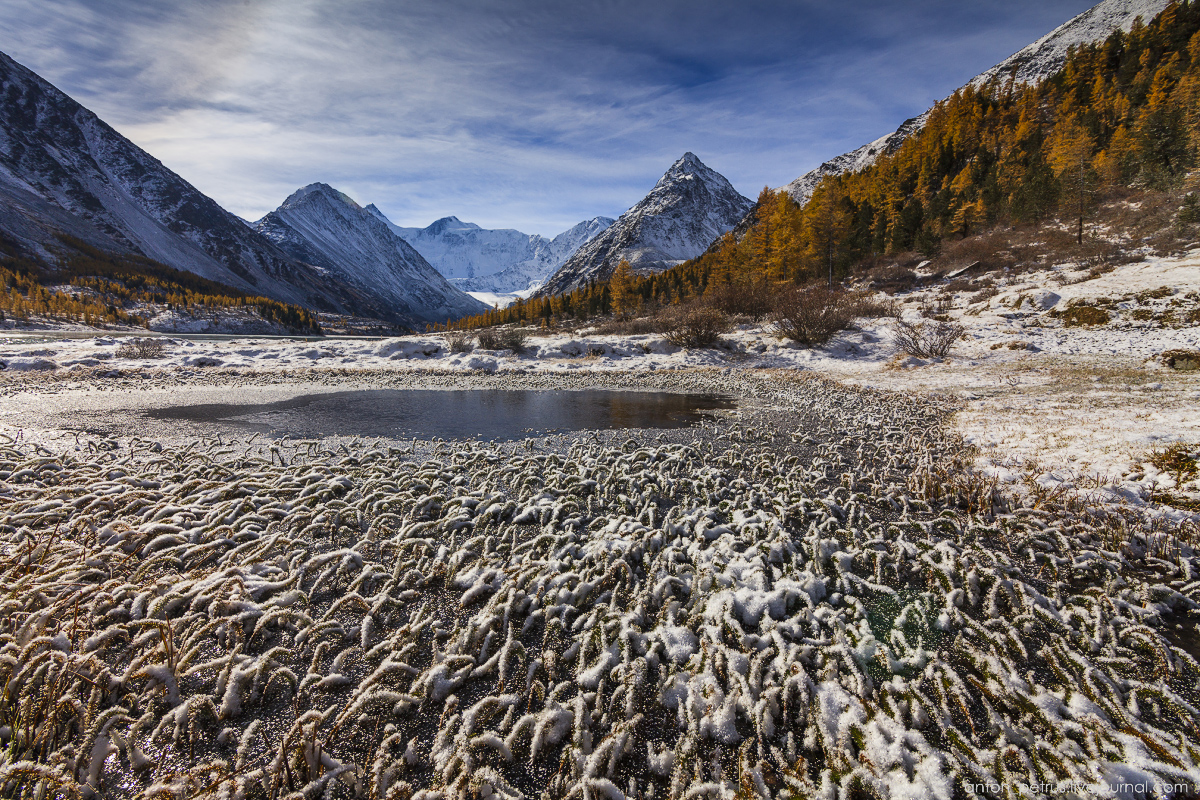 Golden autumn in Altai. Lake Akkem 06