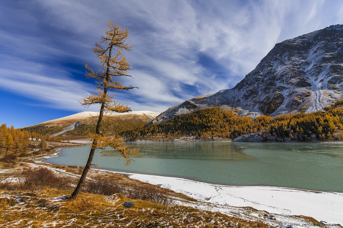 Golden autumn in Altai. Lake Akkem 10