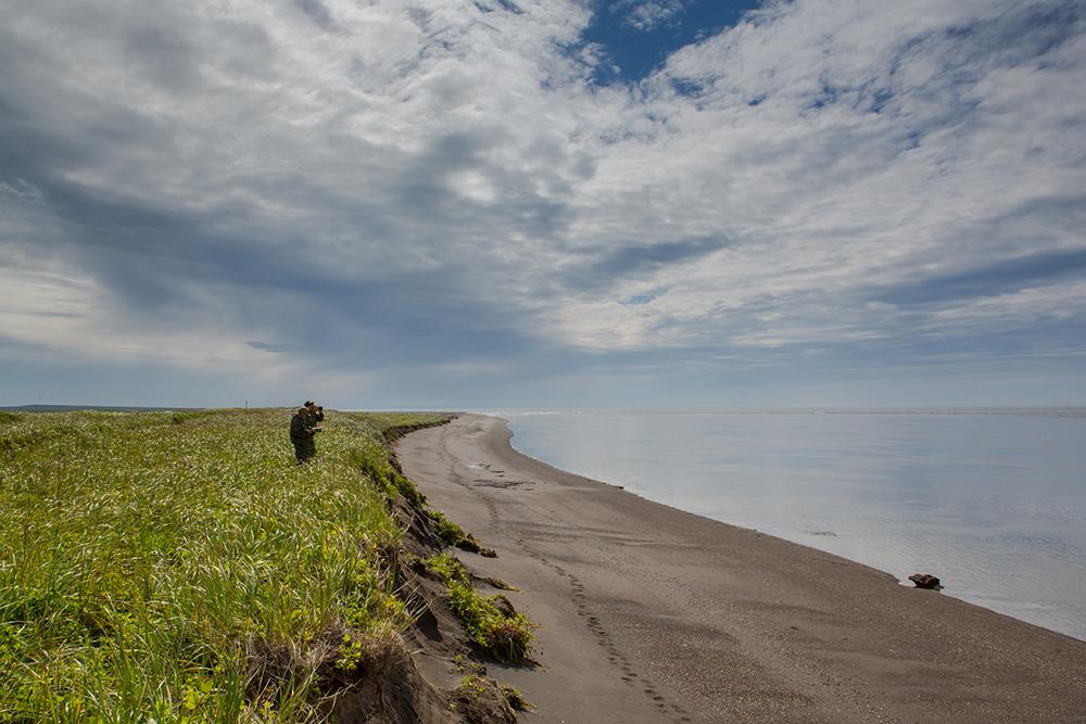 Kamchatka the Land of bears 08