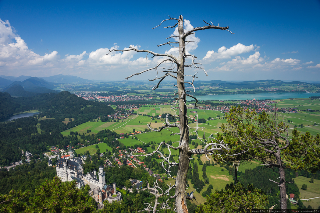 Neuschwanstein Castle 34