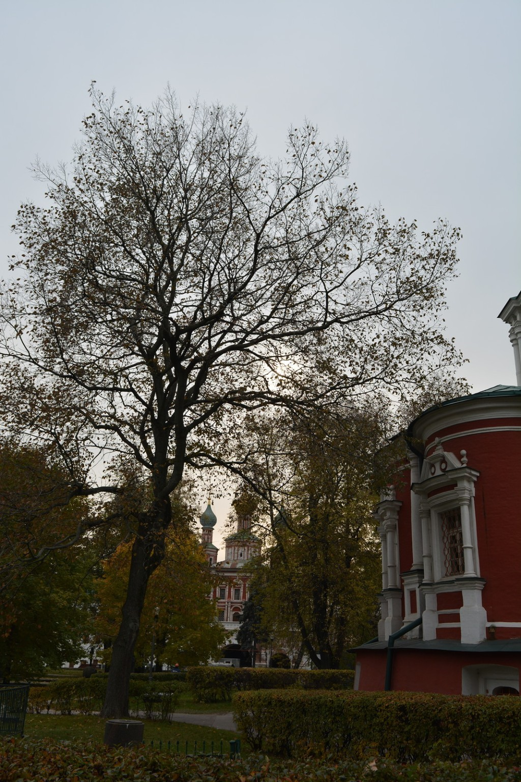Novodevichy convent, Moscow 21