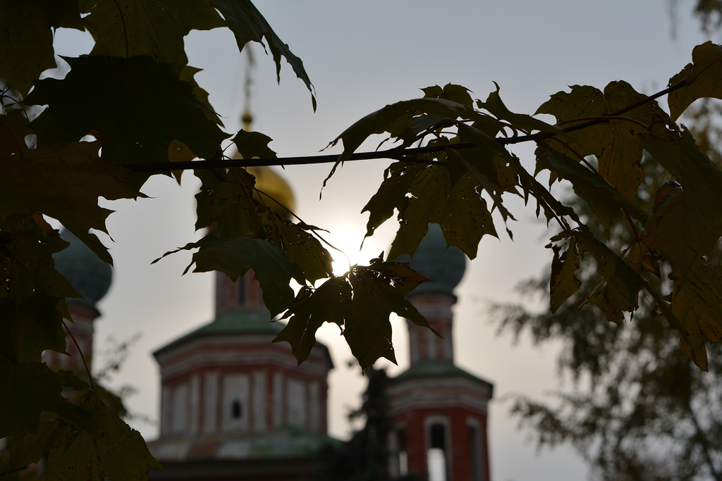 Novodevichy convent, Moscow 29