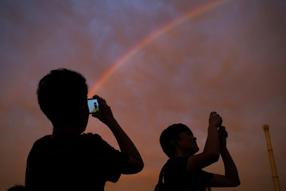 Rainbow 29