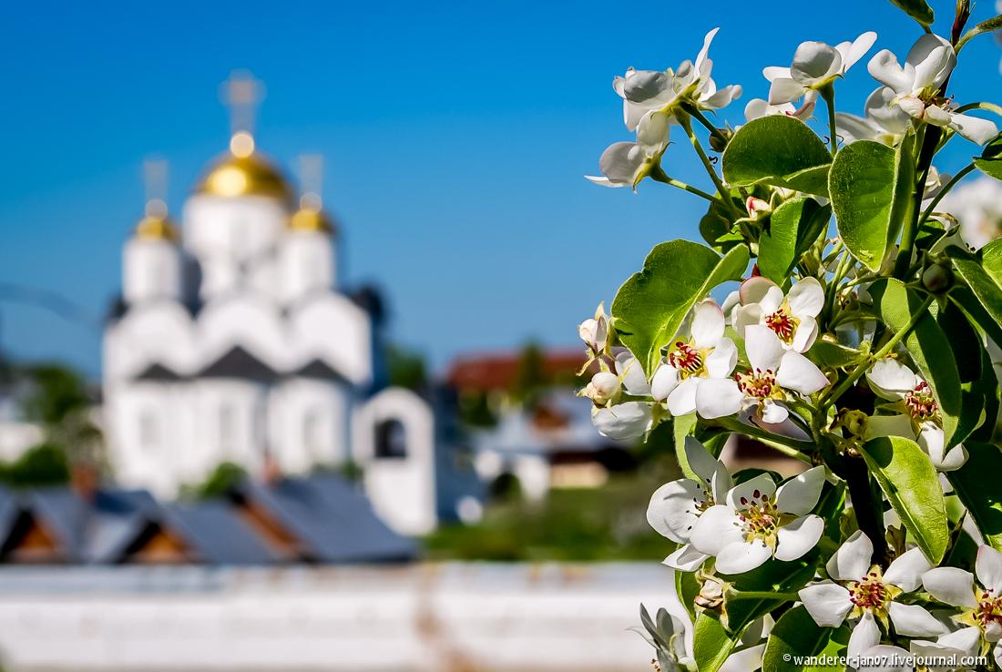 Suzdal. Pokrovsky monastery 26
