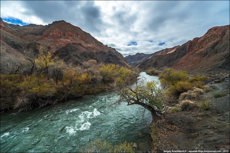 The Grand Canyon in Kazakhstan 24