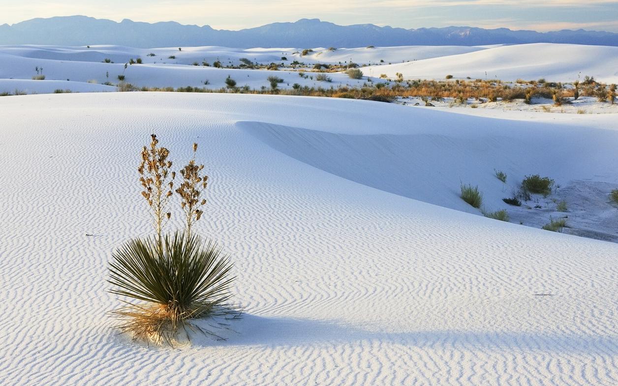 Уникальные места в мире: пустыня белого песка