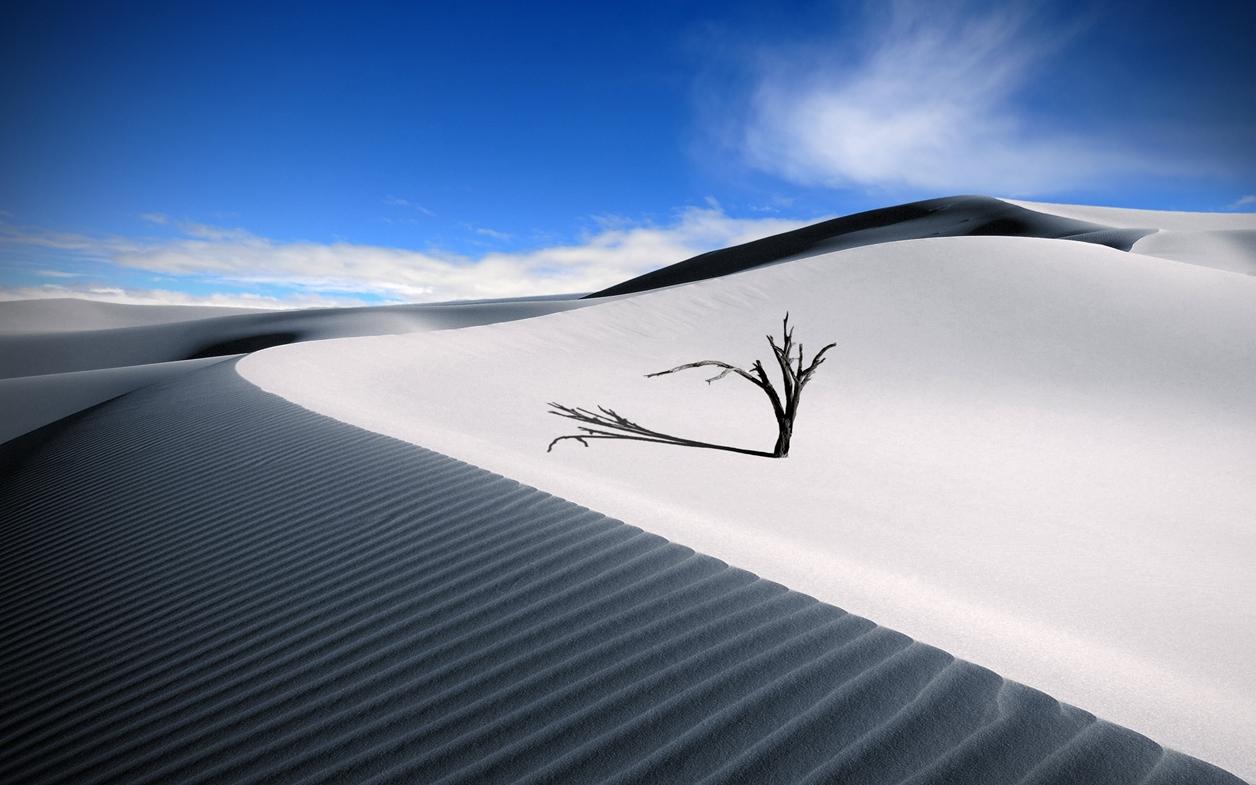 White Sands 02