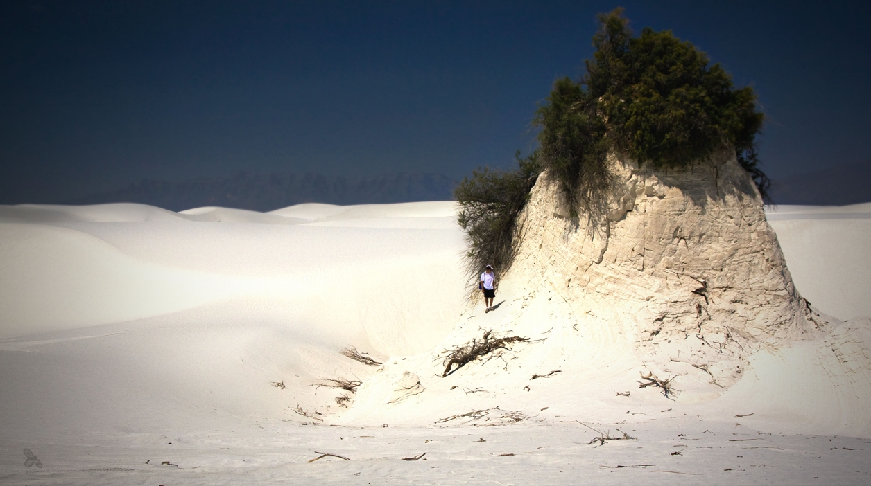 White Sands 08