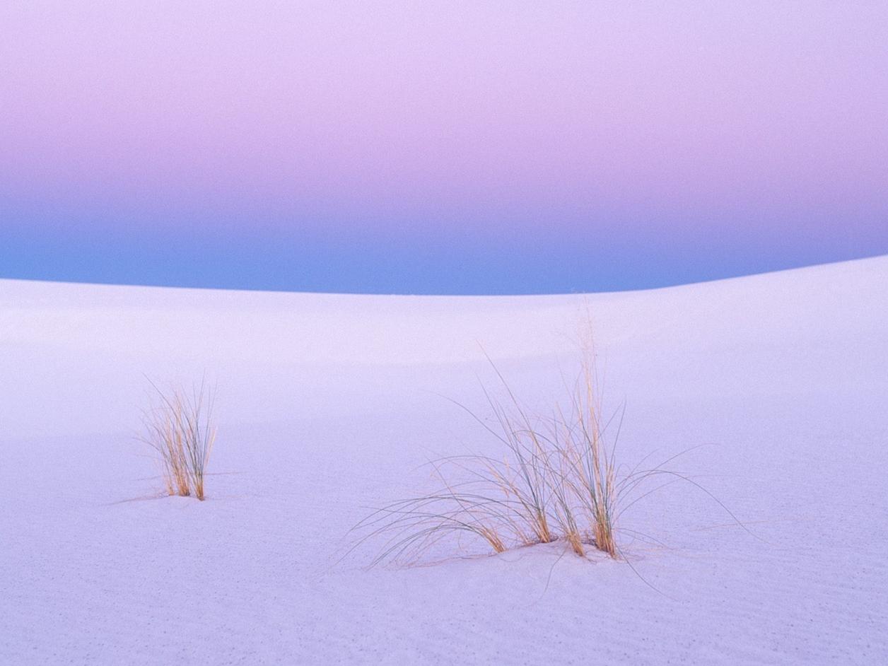White Sands 09