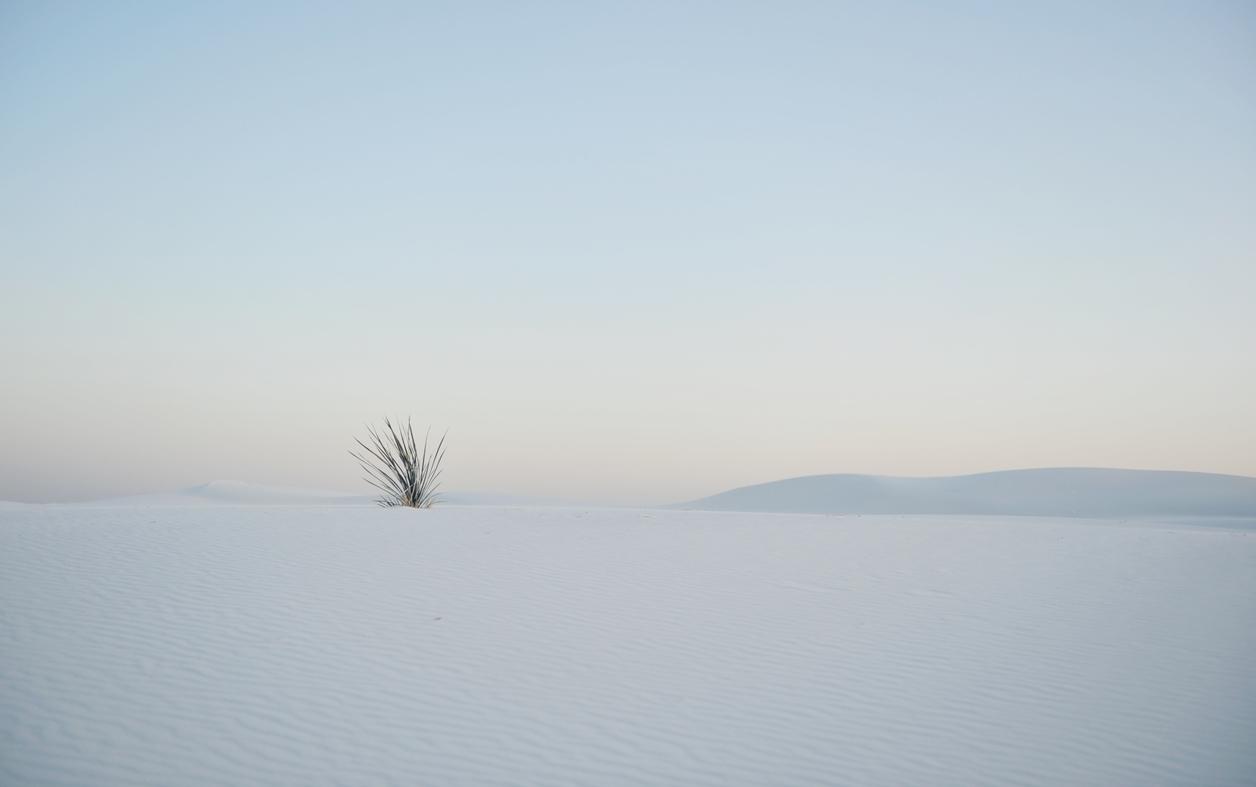 White Sands 12