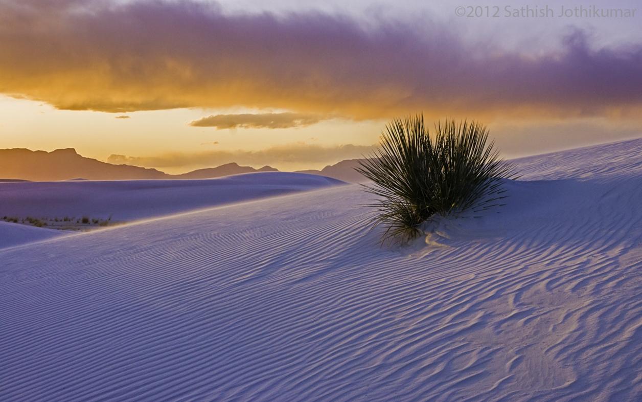 White Sands 16