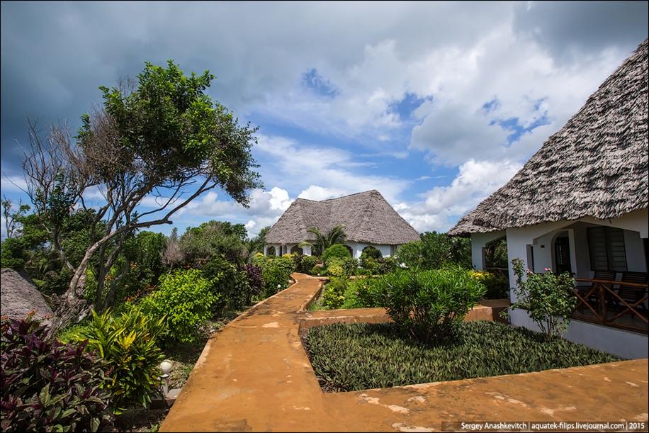Zanzibar 03
