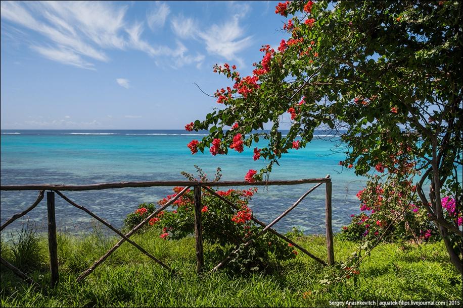 Zanzibar 13