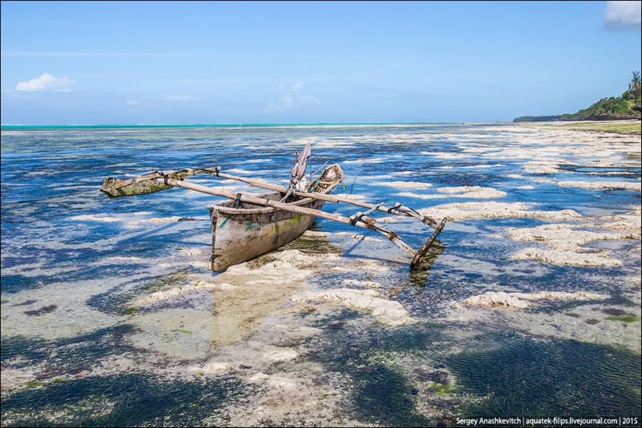 Zanzibar 19
