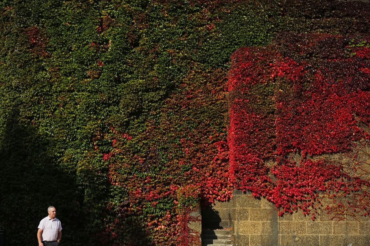 late autumn 16