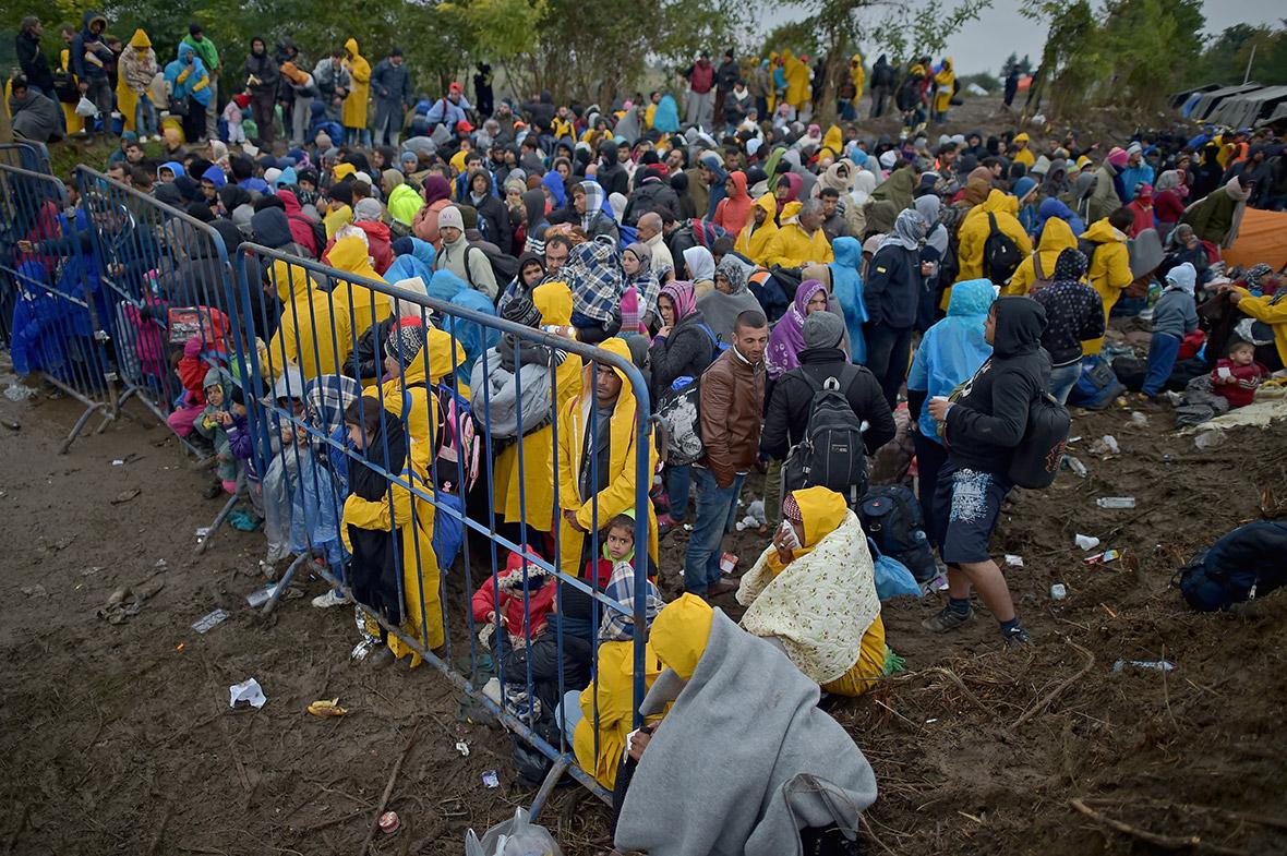 migrant-crisis (7)