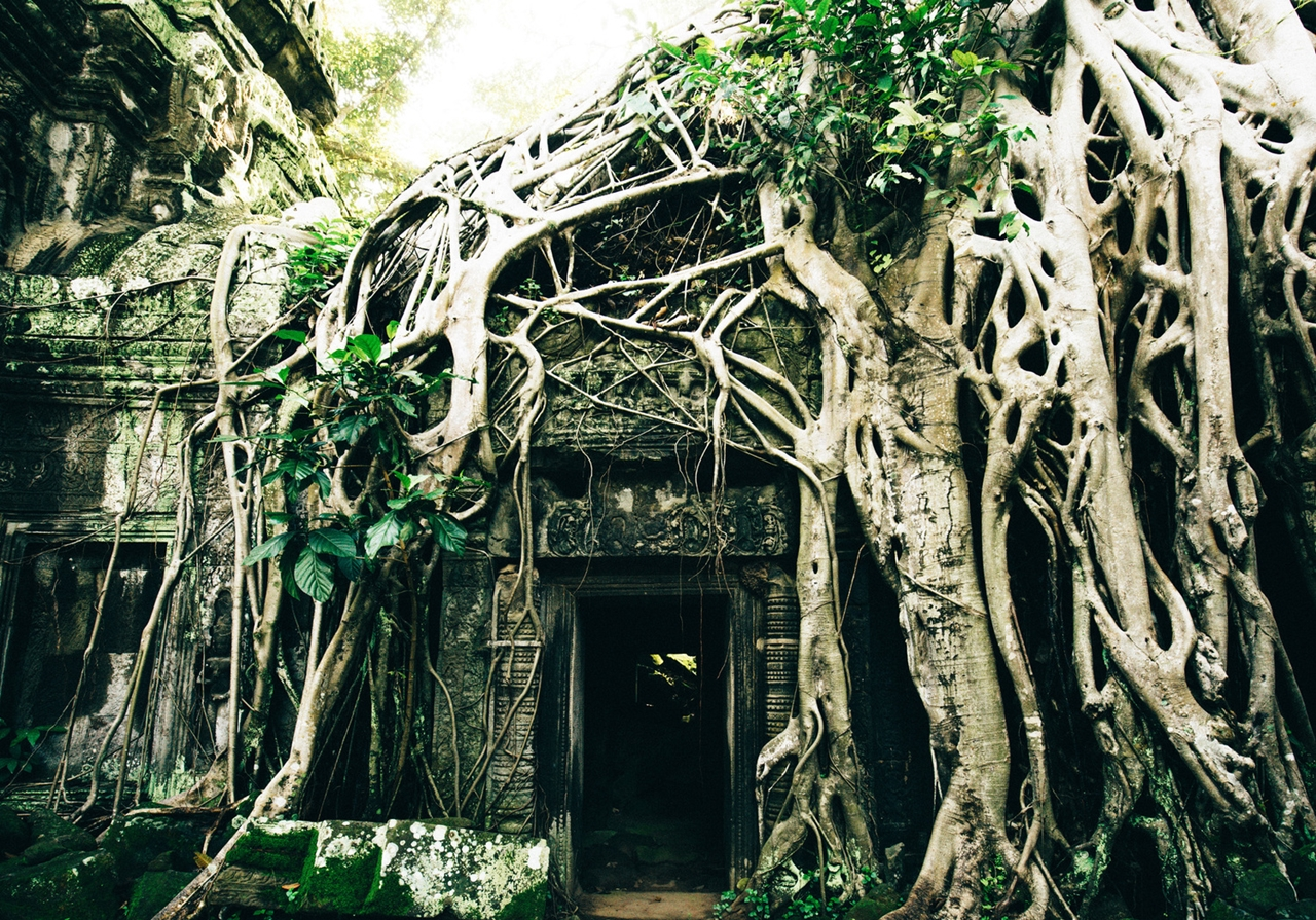 the-temples-of-angkor 13
