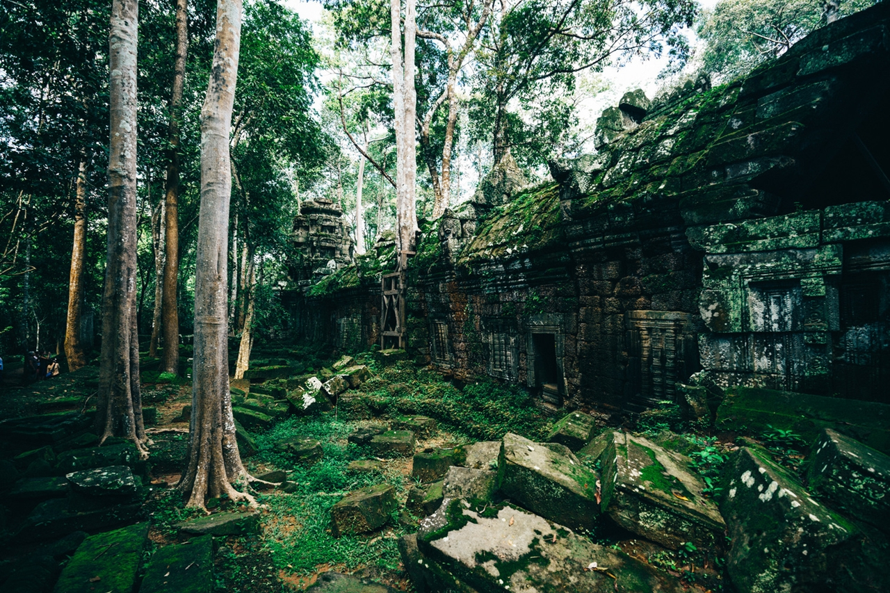 the-temples-of-angkor 15