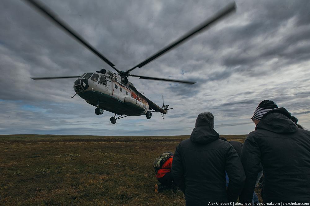 tundra_34