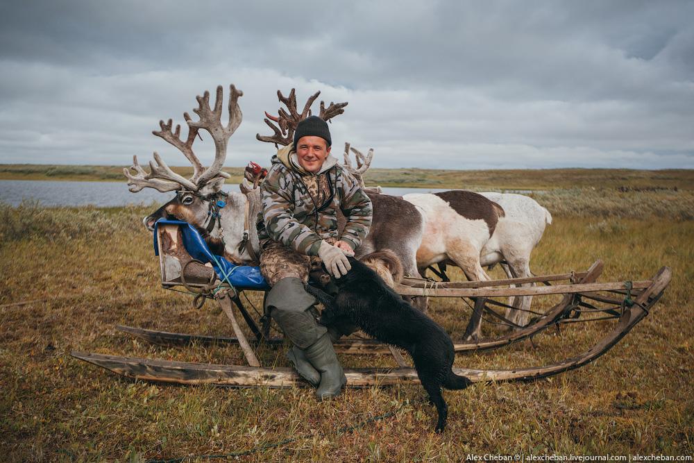 tundra_36