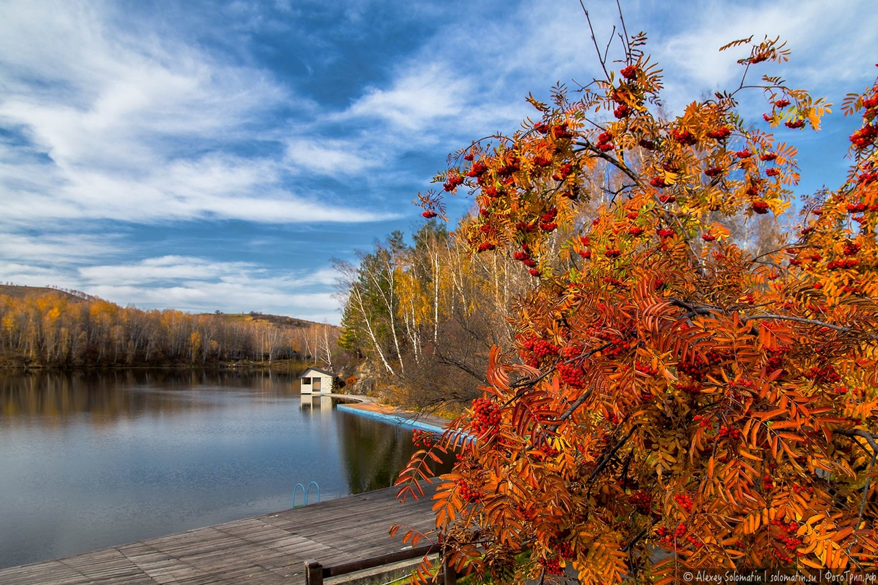 A riot of autumn colors in the Altai 08