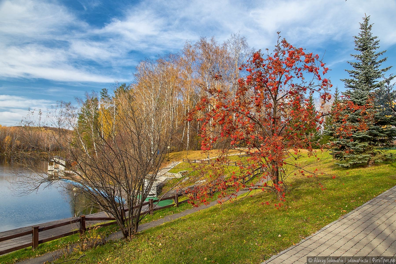 A riot of autumn colors in the Altai 09